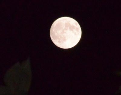 150927_moon.jpg