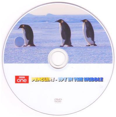 Penguins-Spy-in-the-Huddle.jpg
