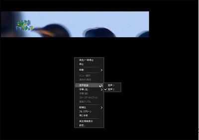 anydvd01.jpg