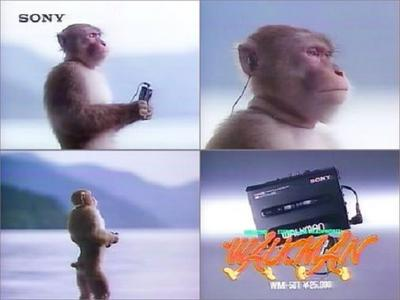 ape03.jpg