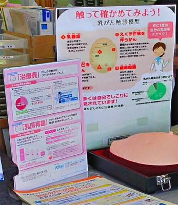 breastcancer03.jpg