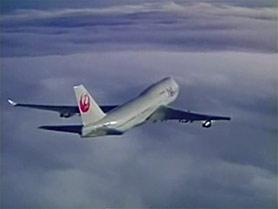 flight11.jpg
