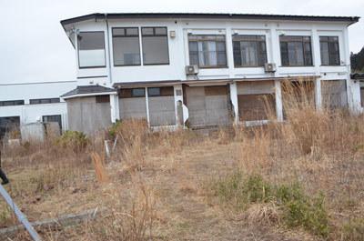 fukushima22.jpg
