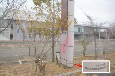 fukushima25.jpg