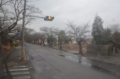 fukushima40.jpg