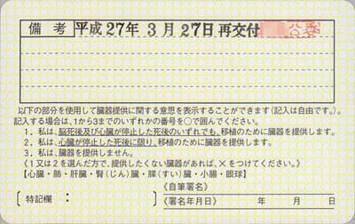 license06.jpg