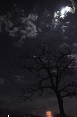 moon_jupiter.jpg
