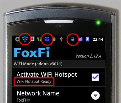 n04c-foxfi2124-1.jpg