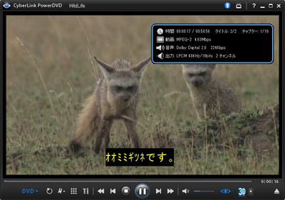 nu_author2.jpg