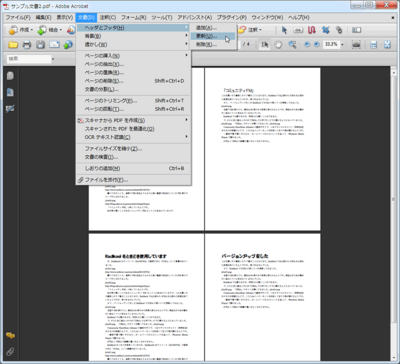 pdf-page02.png