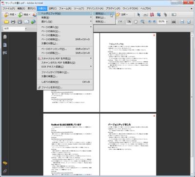 pdf-page06.png