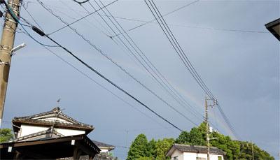 umbrella04.jpg